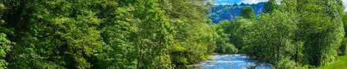 <center>|◐|- La Rivière Calme -|◑|</center>