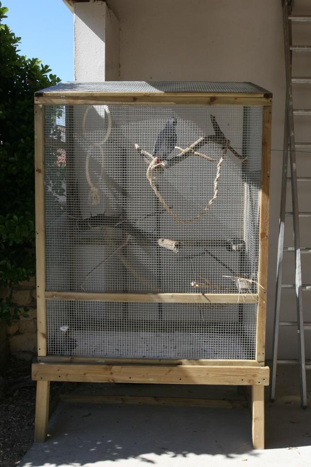 cage ext 233 rieure des grisous
