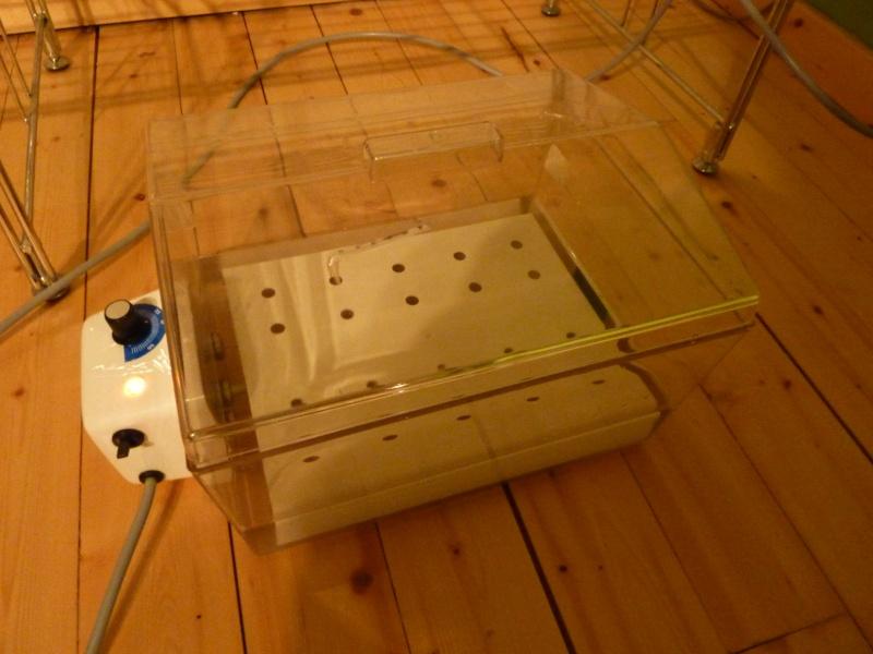 Adaptation d 39 un bain marie de labo en incubateur - Faire un bain marie ...