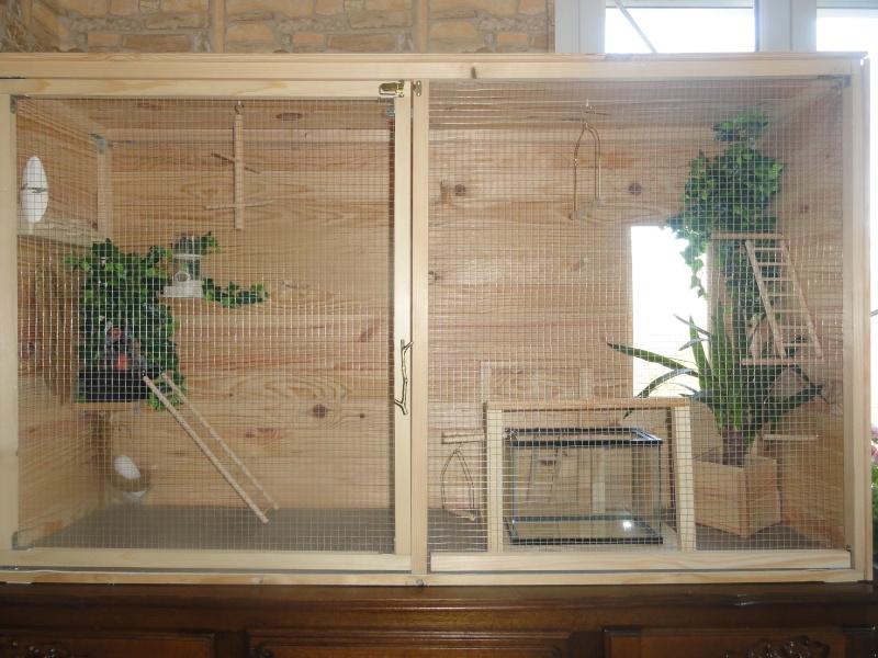 Modeles cages et volieres page 4 for Voliere interieur pour perruche