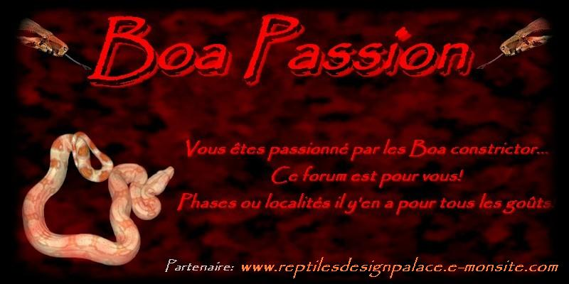 Boa passion