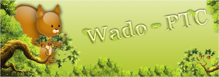 Wadoptc - Le forum