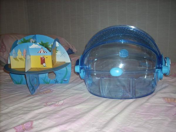 Jeux gratuit de hamster - Hamster gratuit ...