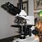 Attraverso il microscopio
