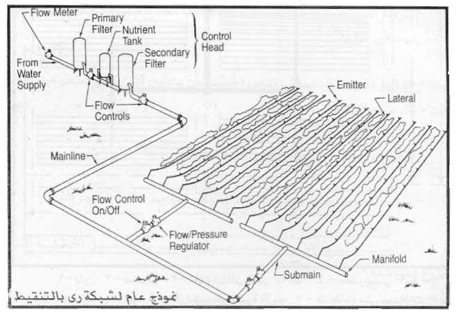 الري بالتنقيط pdf