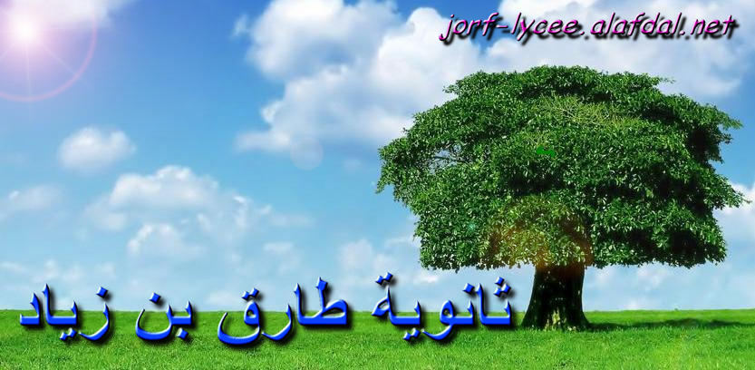 ثانوية طارق بن زياد (نيابة إنزكان أيت ملول)