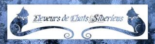 Bannière annuaire éleveurs Sibs