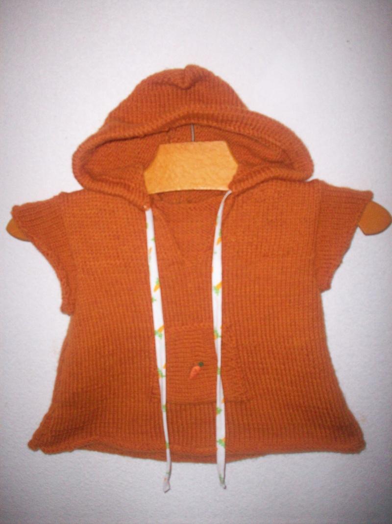 tricot dans tricot 100_2718