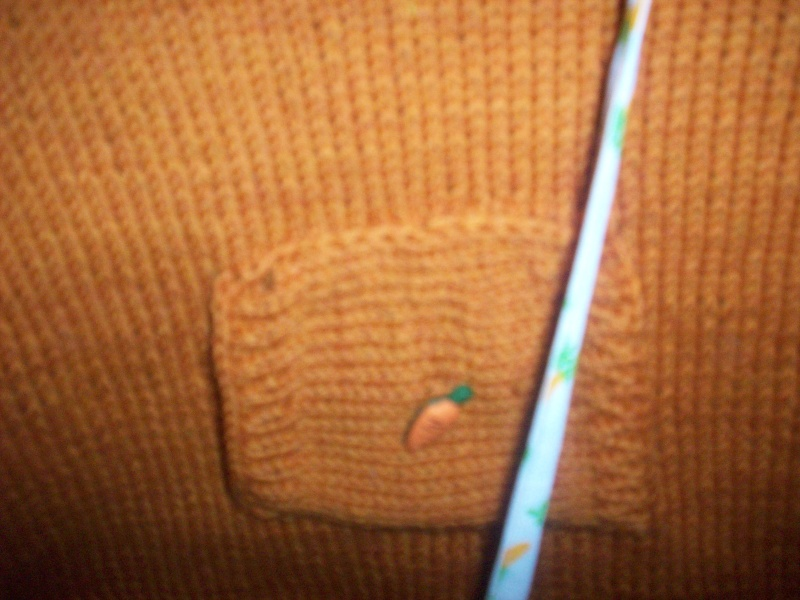 100_2719 dans tricot