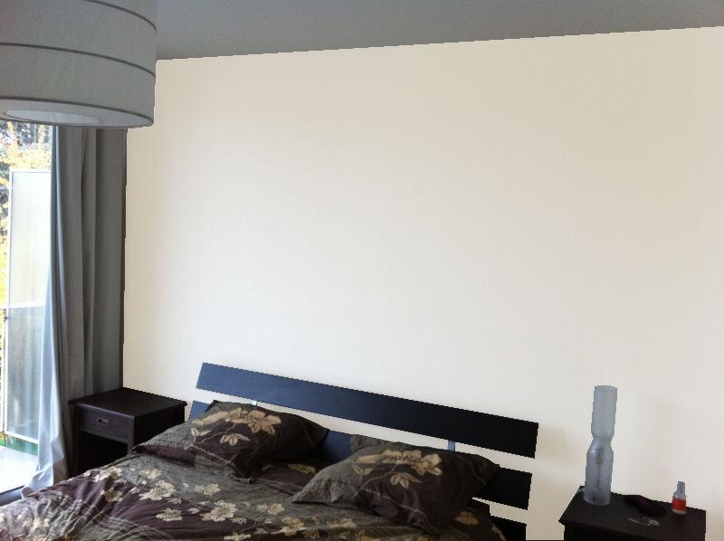 Besoin de conseils peinture pour une chambre oops for Conseils peinture chambre