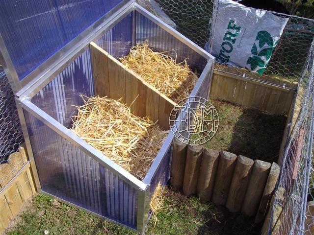 Comment bien organiser l 39 hibernation de vos tortues for Amenagement jardin pour tortue