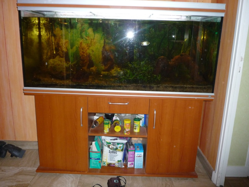a vendre ensemble aquarium meuble filtre poissons co2 78. Black Bedroom Furniture Sets. Home Design Ideas
