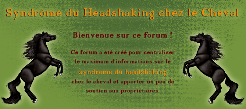 Syndrome du Headshaking chez le Cheval