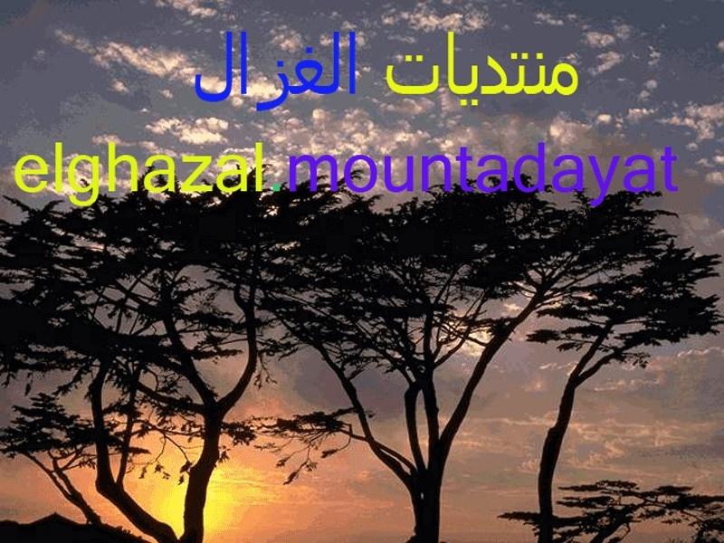 الغزال فى الرياضيات للأستاذ / ناصر غزالة