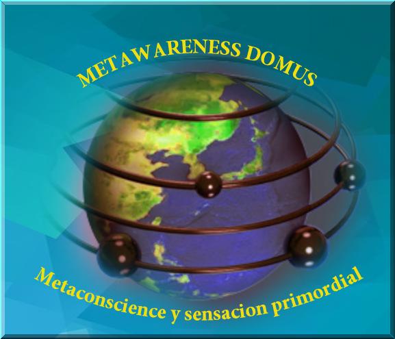 METAWARENESS